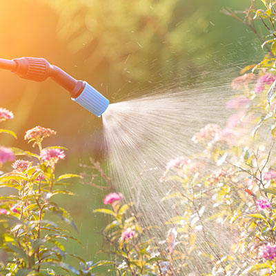 szkolenia: środki ochrony roślin